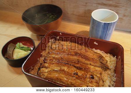 Traditional Japanese Grilled Unagi in local restaurant, Tokyo, Japan