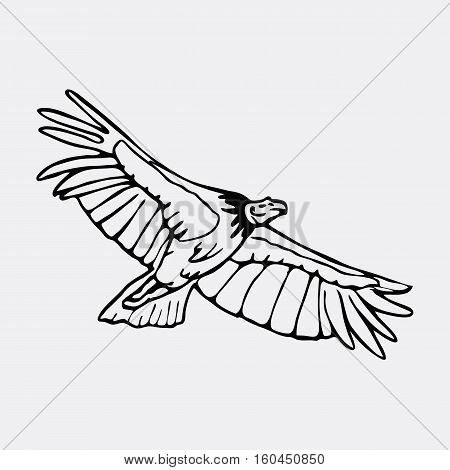 Hand-drawn pencil graphics, vulture, eagle, osprey, falcon, hawk, scavenger, condor. Engraving, stencil style. Black and white logo, sign, emblem, symbol. Stamp, seal. Simple illustration. Sketch.