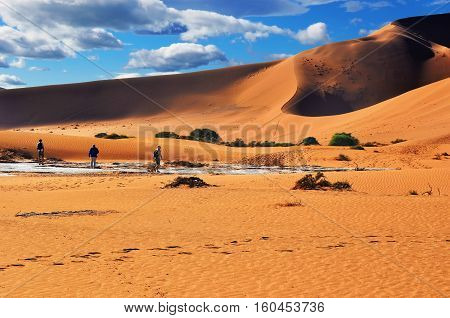 Tourists walking on the scenic dunes of Sossusvlei Namib desert Namib Naukluft National Park Namibia. Morning light. Adventure and exploration in Africa