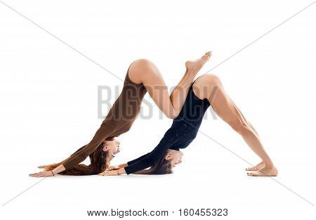 Two Young Women Doing Yoga Asana Downward Facing Dog