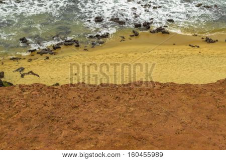 Aerial Top View Empty Beach Pipa Brazil