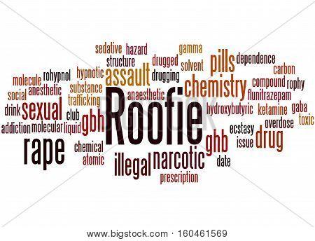 Roofie, Word Cloud Concept 2