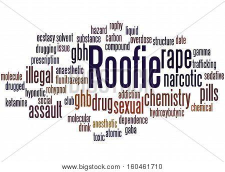 Roofie, Word Cloud Concept 5