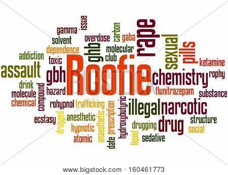 Roofie, Word Cloud Concept 6