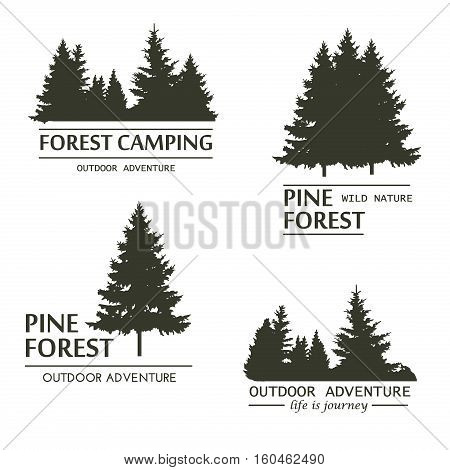 Fir trees silhouette logo. Pine plant wood branch natural forest silhouette. Trunk environment deciduous pine trees silhouette vector. Forest logo growth seasonal. Vintage forest design template.