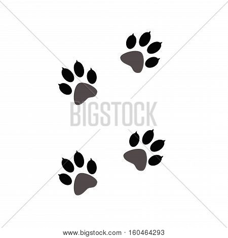 Paw prints  animals on white. Animal tracks on a white isolated background. Steps animal drawn for the design of backdrops.
