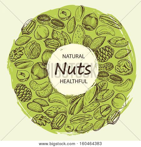 Vector set of sketches of various nuts with a grunge background. Vintage design with natural and healthful nuts illustration.