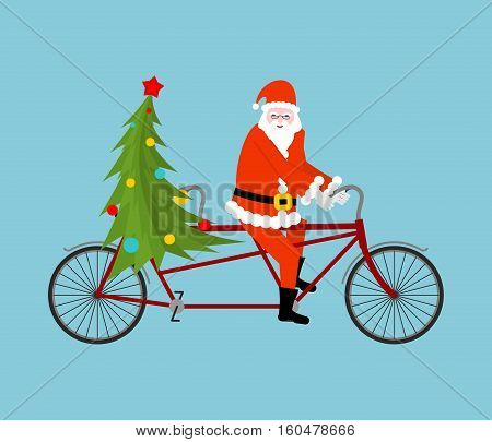 Santa Claus And Christmas Tree Ride Bicycle. Christmas Tandem. Old Man In Red Suit And A Fur-tree Ne