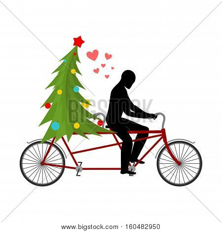 Christmas Lover. Lovers Of Bicycling. Man Rolls Christmas Tree On Tandem. Joint Walk On Street. Roma