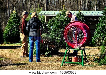 Pittsboro North Carolina - December 7 2016: Husband and wife buying a Christmas tree at Phillips Farm of Chatham on Hanks Chapel Road