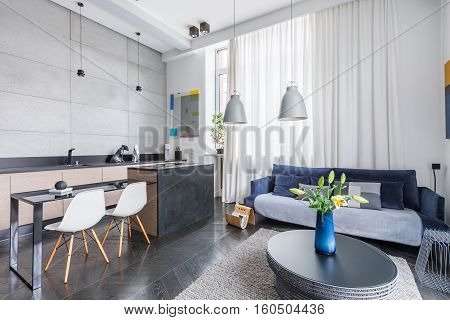 Living Room Kitchen Combo