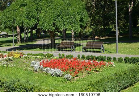 Benches In Public Park
