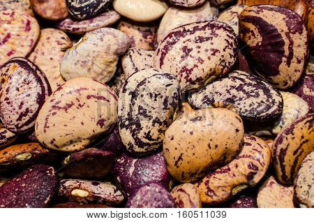 Healthy homegrown organic vegetable butter beans, legume.  Nutritious food for healthful diet.