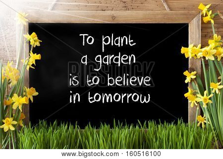Blackboard With English Quote To Plant A Garden Is To Believe In Tomorrow. Sunny Spring Flowers Nacissus Or Daffodil With Grass. Rustic Aged Wooden Background.