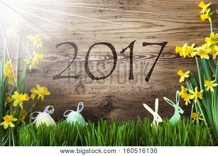 Wooden Background With Text 2017 For Happy New Year. Easter Decoration Like Easter Eggs And Easter Bunny. Sunny Yellow Spring Flower Narcisssus With Gras. Card For Seasons Greetings
