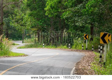Curve of road in countryside to jungle