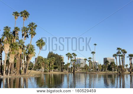Bright blue winter sky on the lake in Encanto park located right in downtown of Phoenix Arizona; Copyspace