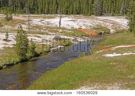 Quiet Stream Through a Thermal Area in the Shoshone Basin in Yellowstone National Park in Wyoming