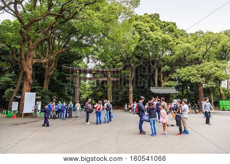 Meiji Shrine Torii Gate