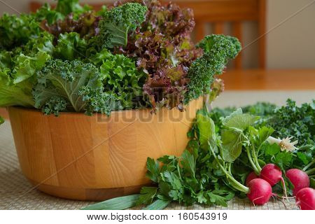 A Salad bowl filled with healthy greens