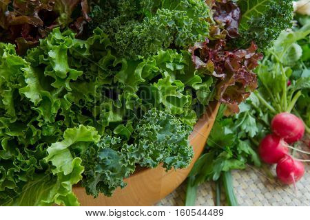 Various healthy greens and vegetables in salad bowl