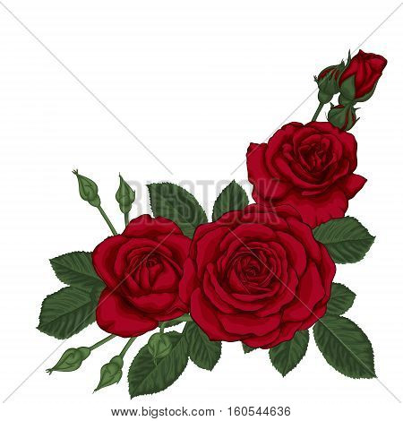 beautiful bouquet with three red roses and leaves. Floral arrangement. design greeting card and invitation of the wedding birthday Valentine's Day mother's day and other holiday.