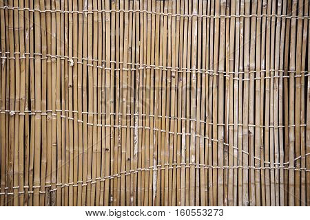 Detail of a Bamboo Fence. Old Bamboo Fence.
