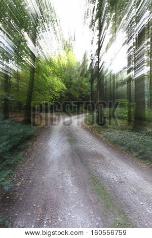 Abstract image - quickly on the forest road