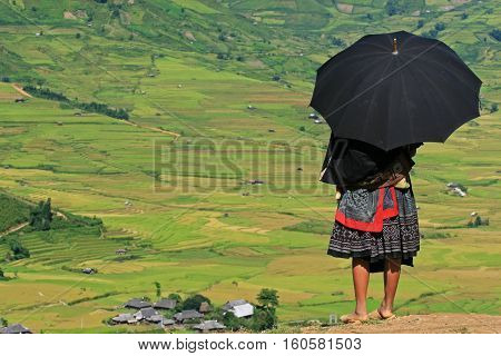 An unidentified Hmong woman standing on the side of a mountain pass and taking a look around a valley of paddy field.