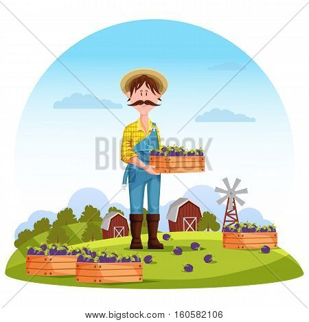 Agriculture man on field, farmer harvester. Worker or gardener, farmer harvesting healthy plum on field in front of barn or granary, mill. Perfect for agrarian farmer or cultivation plants on field