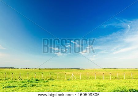 Green Field With Some Fences On A Beautiful Blue Sky Day. Sunny Day On A Beautiful Day At Green Fiel