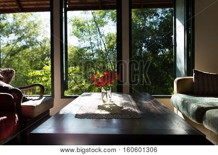 Ixora Flower, Table, Chair And Sofa In Living Room Near Window