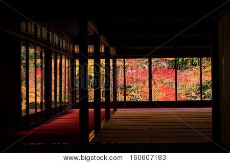 Autumn Foliages View From Tenju-an, Kyoto