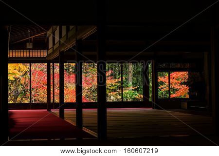 Autumn Colors Behind Tenju-an Temple Building, Kyoto