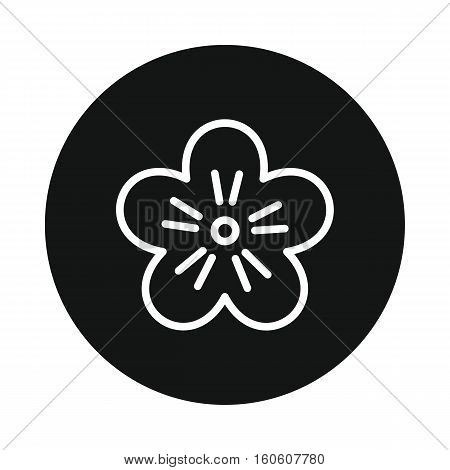 Japan flower sakura icon isolated on white background. Vector illustration