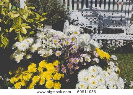 White Metal Chair And Bouquet Of Blooming Flower In Park