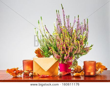 Autumn letter. Still life with closed envelope heather flowers dry oak leaves and candles