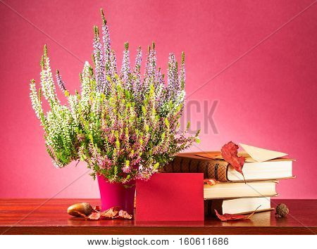 Autumn message. Still life with red blank card envelope heather flowers dry leaves and books