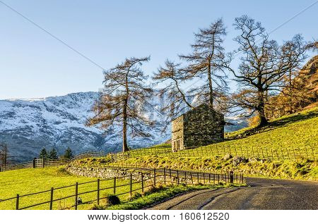 Small hut on green hillside with trees in front of mountains in Langdale, English Lake District, UK.