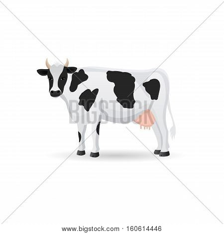 Black and white spotted cow isolated .Cute farm cattle domestic animal. Vector flat ilustration on a white background.