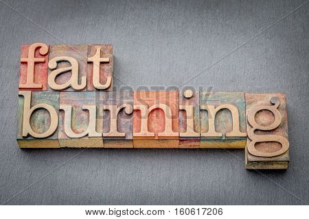 fat burning word abstract in letterpress wood type against a gray slate rock