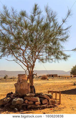 Water Well In Sahara Desert