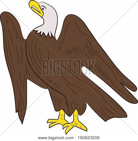 Sitting eagle isolated on white background. Vector image