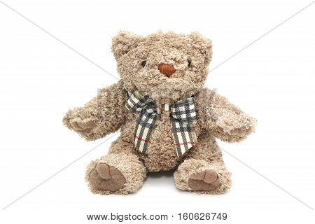 Isolated Fluffy Teddy Bear On White Background