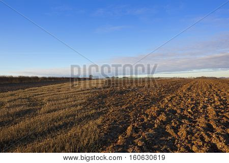 Partially Plowed Field
