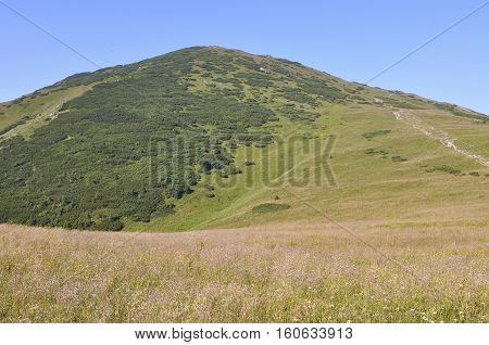 Ridgeway, mount Chleb, Velky Rozsutec,Mala Fatra national park, Lesser Fatra, Little Fatra, on the top