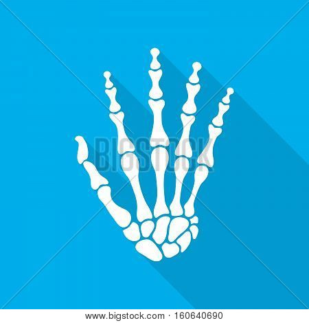 Bones of hand with long shadow on blue background. Skeleton hand. Vector illustration. The skeleton human hand.
