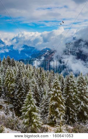New Years is soon. On the Alpine Pass Giau of the Dolomites first snow fell. The concept of eco-tourism. Evergreen forests in the valley covered with the first snow