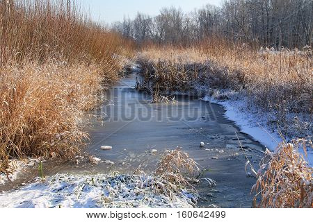narrow frozen river with banks covered with sear grass in winter