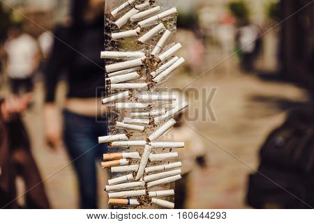 many broken cigarette. No for smoking yes for health